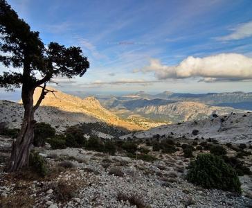 Monte Corrasi, Oliena